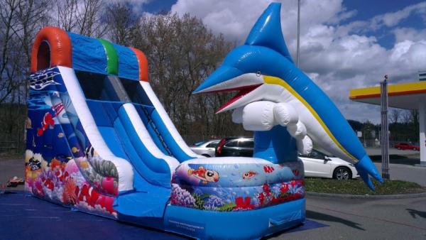 wasserrutsche delphin mieten