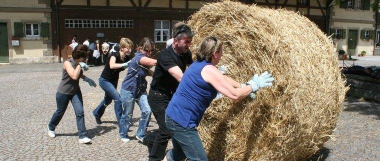 Bauernhof-Olympiade